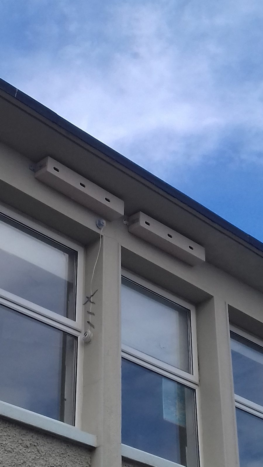 Installed nest boxes