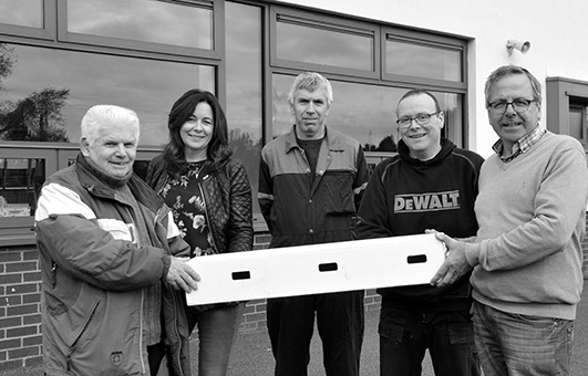 Wild Kildare Swift Group with nesting box for 3 pairs of swifts