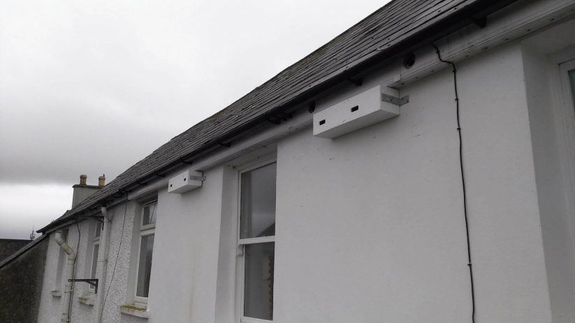 Nest Boxes in Tralee in co. Kerry by Anthony Dawson