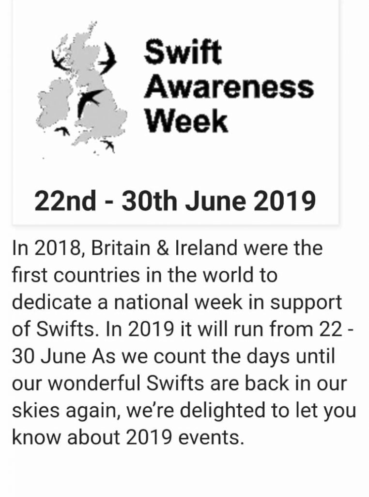 Action for Swifts - Swift Aware Week